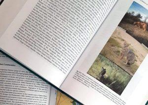 Compilan libro con investigaciones sobre el estuario de Bahía Blanca